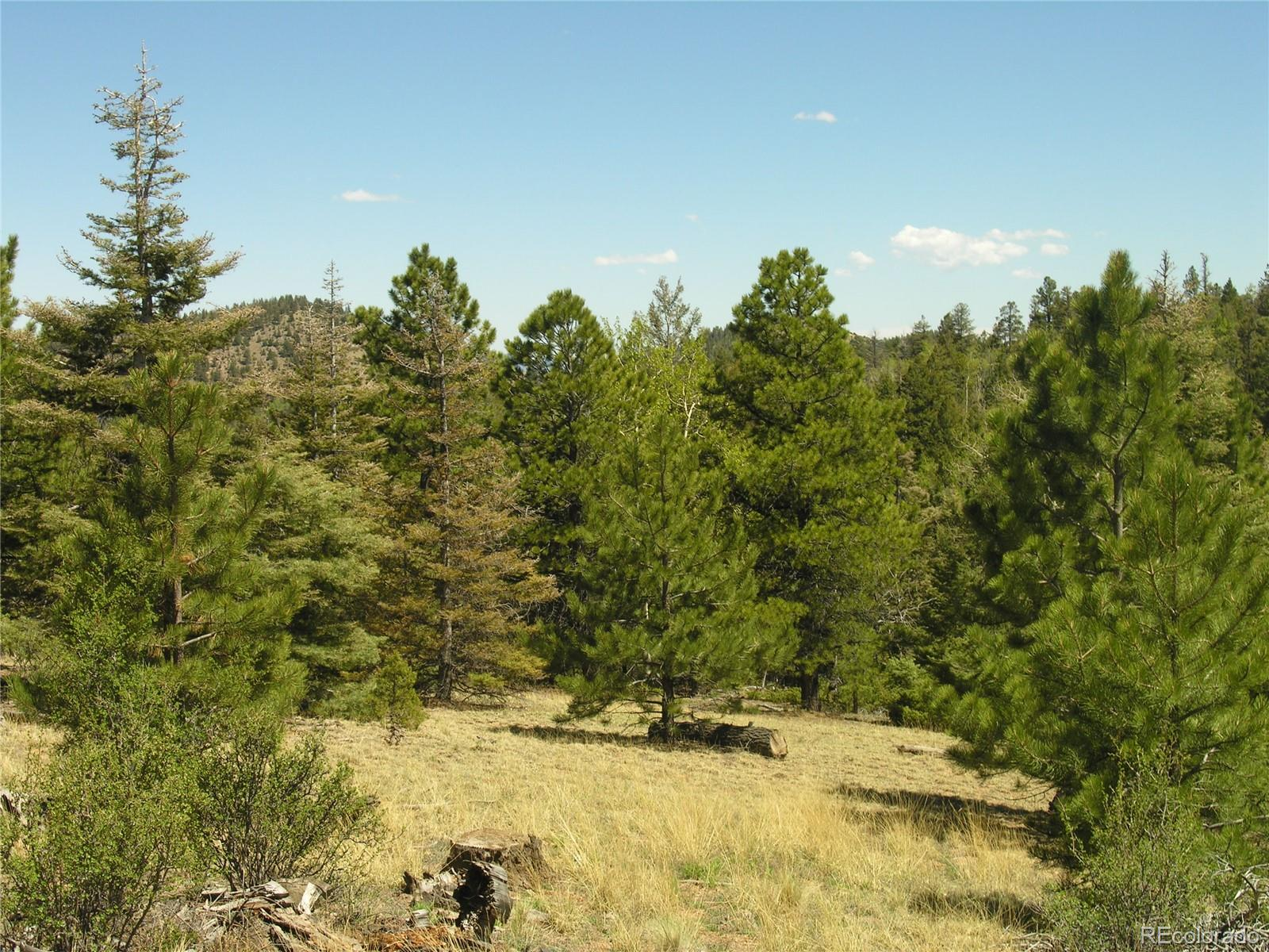Lot 28 Copper Mountain Roads Property Photo - Cotopaxi, CO real estate listing
