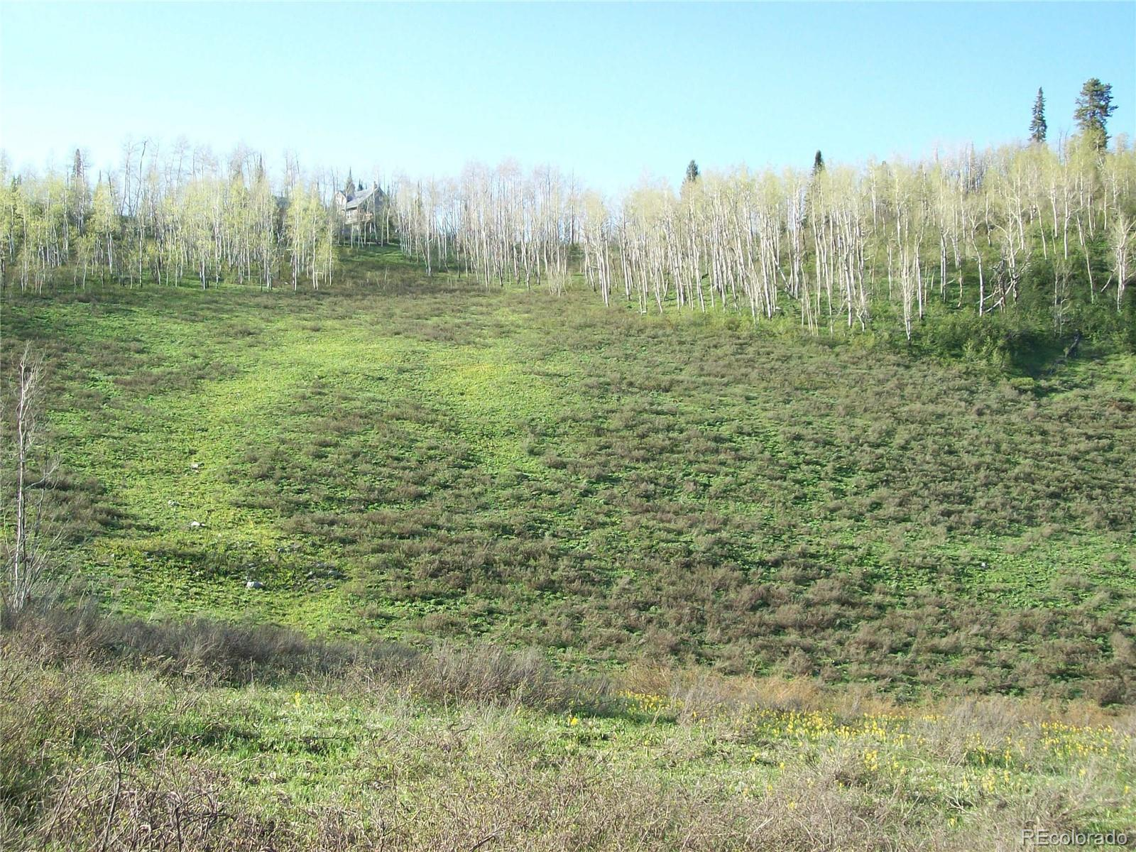 57730 Saturn Court Property Photo - Clark, CO real estate listing