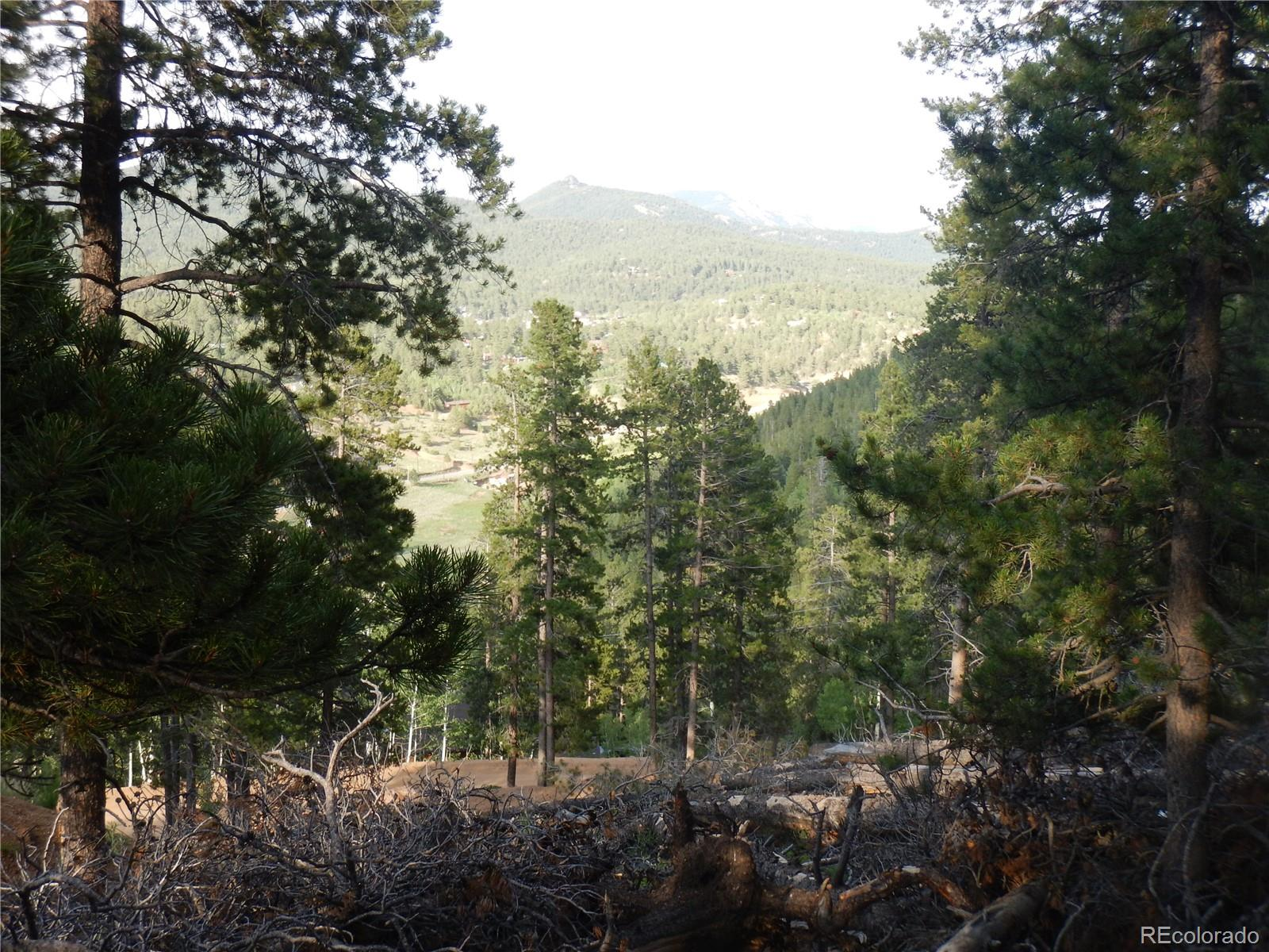 562 Gold Flake Terrace Property Photo - Bailey, CO real estate listing