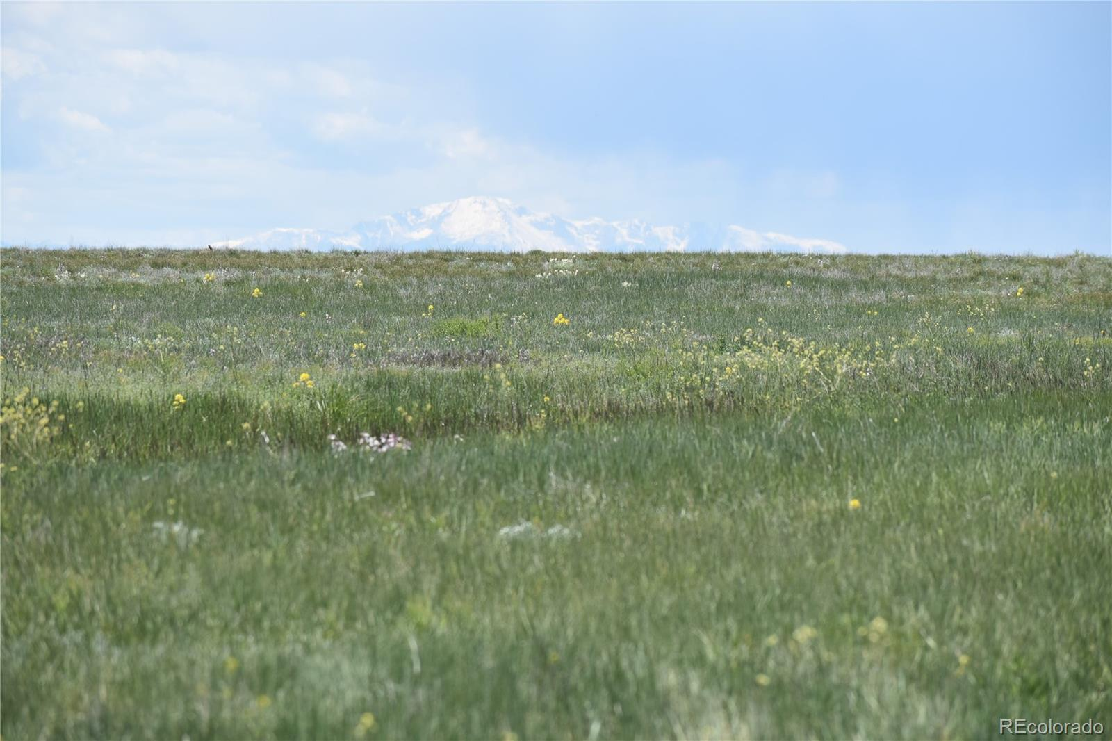 County 169 Road Property Photo - Matheson, CO real estate listing