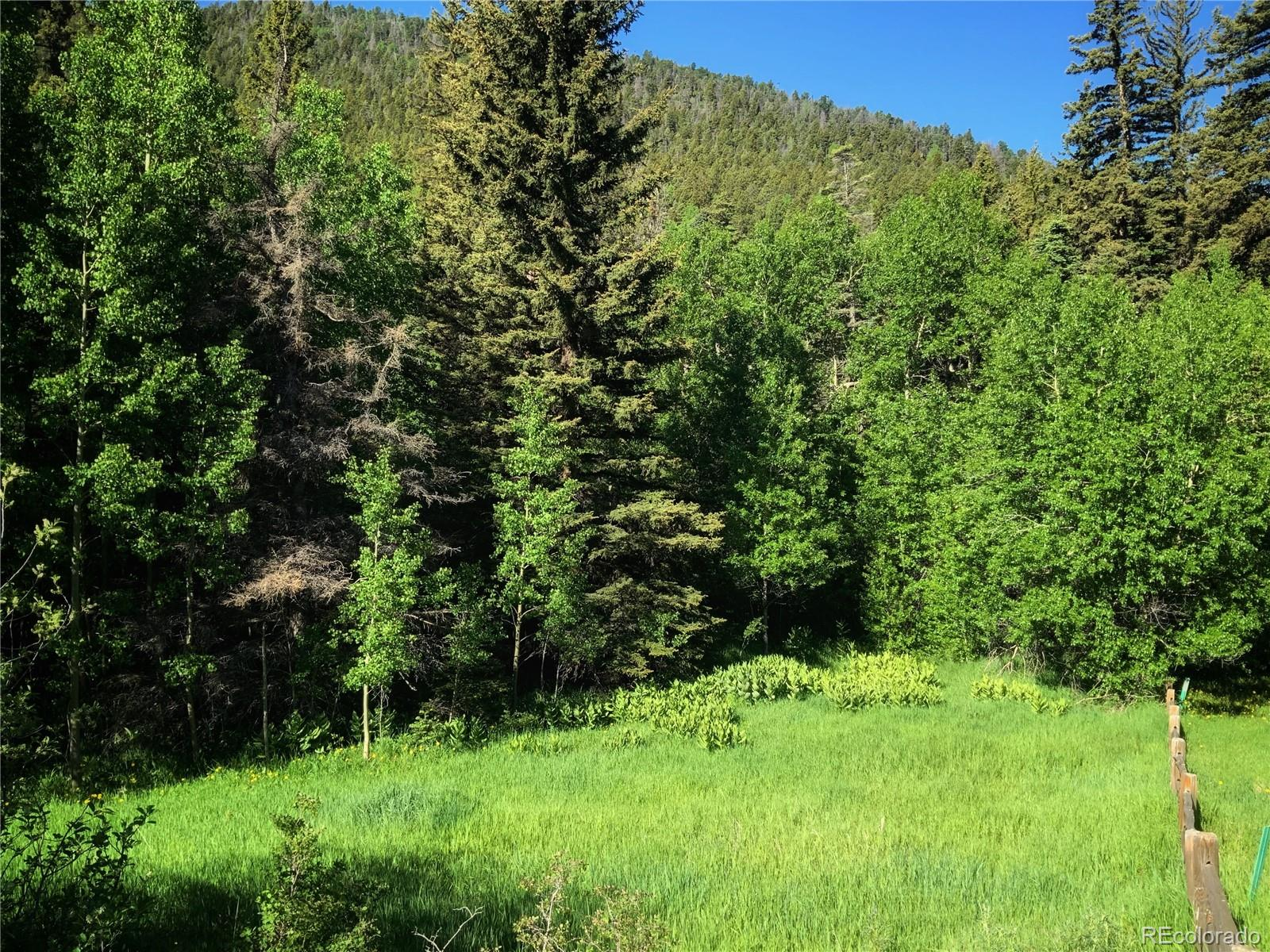 Lots 68 & 69 Aspen Trail Property Photo - Cuchara, CO real estate listing