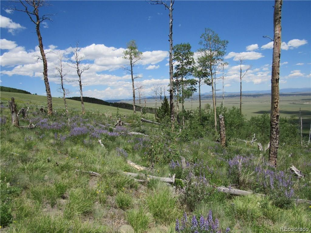 Black Mountain Road, Fairplay, CO 80440 - Fairplay, CO real estate listing