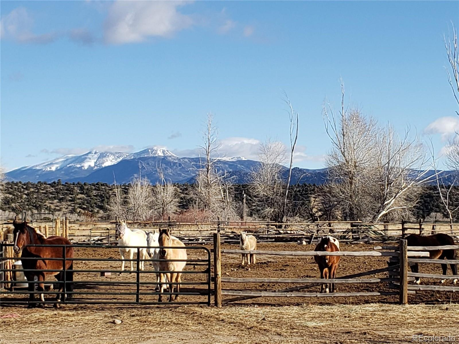 13999 County Road 162, Nathrop, CO 81236 - Nathrop, CO real estate listing