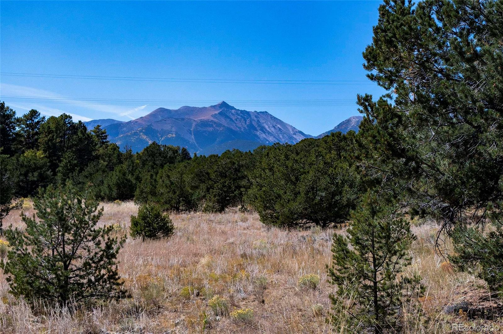 Lot 15 Shavano Drive Property Photo - Nathrop, CO real estate listing