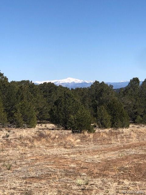 250 Kerrs Hill Circle Property Photo - Westcliffe, CO real estate listing