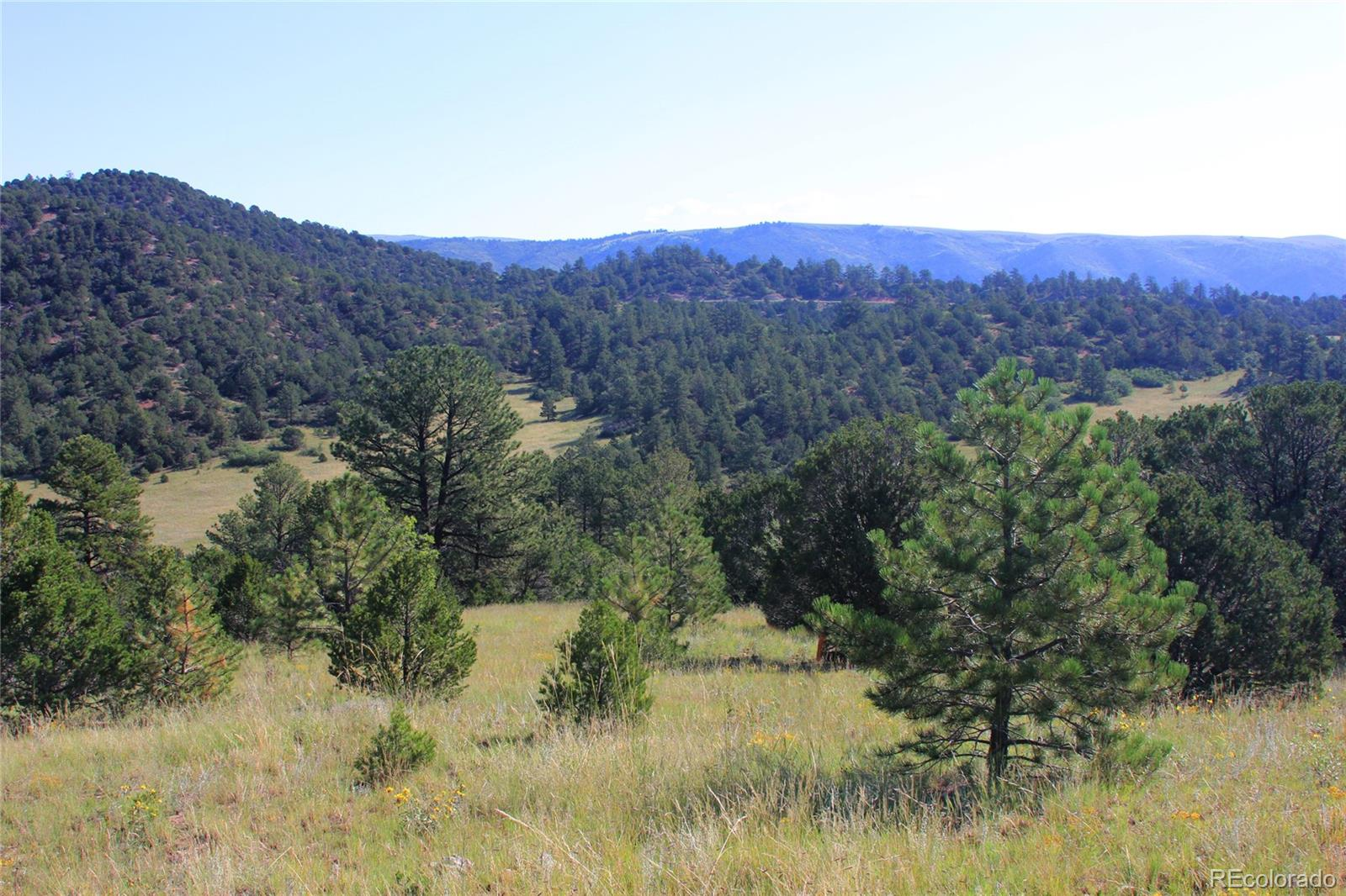 2192 Vista View Road Property Photo - Canon City, CO real estate listing