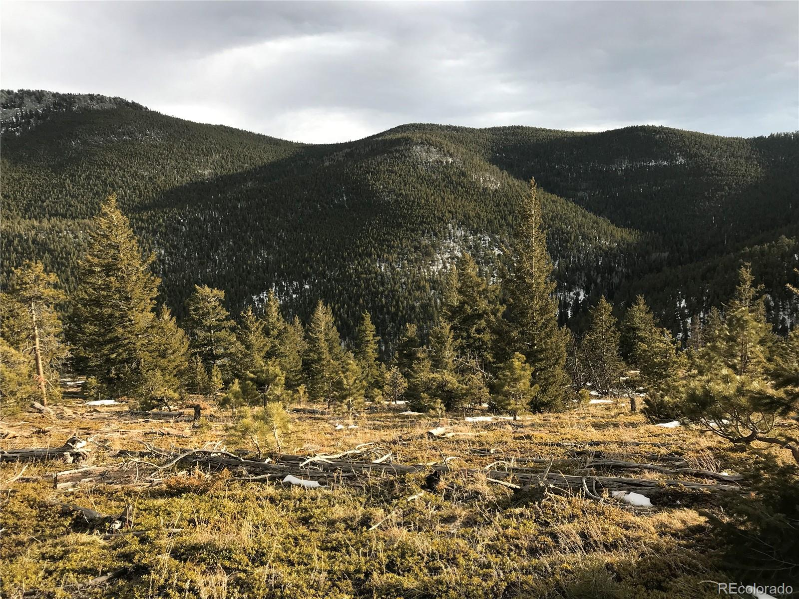 00 Twin Spruce Road Property Photo - Golden, CO real estate listing