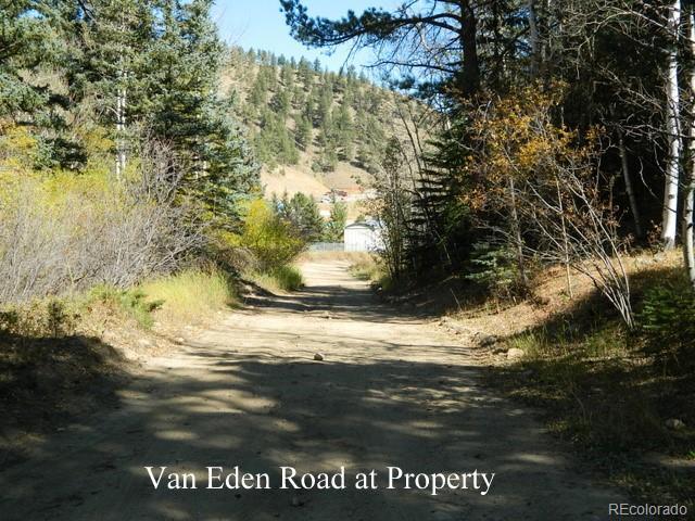 Van Eden Rd-Onterio Mine Property Photo - Idaho Springs, CO real estate listing