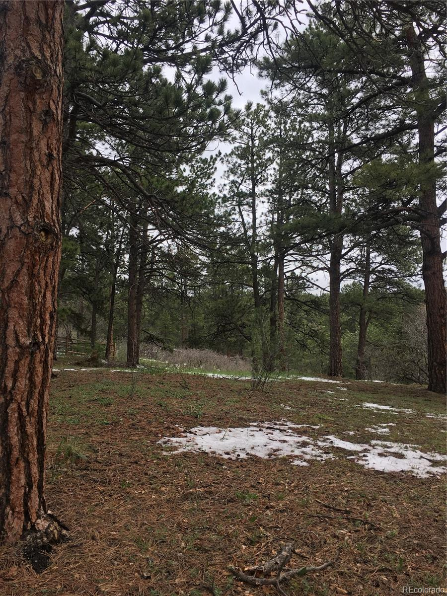 640 Larks Nest Way Property Photo - Monument, CO real estate listing
