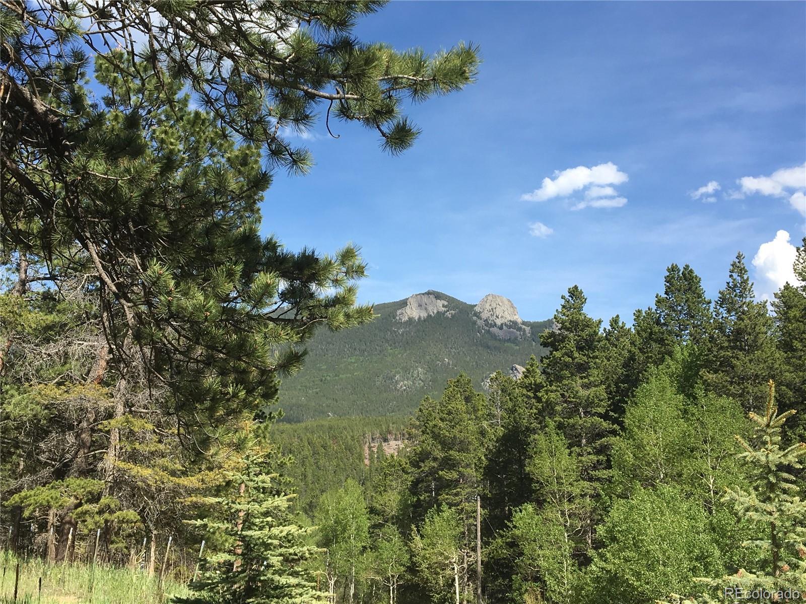 1071 Mountain Meadows Drive Property Photo - Black Hawk, CO real estate listing