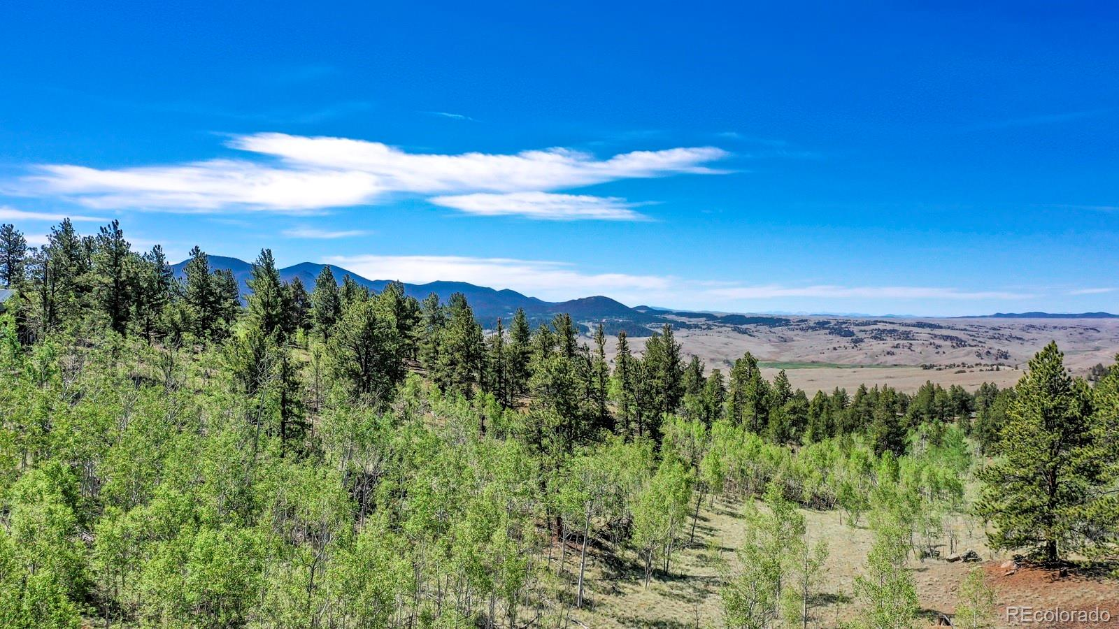115 Wills Way Property Photo - Jefferson, CO real estate listing