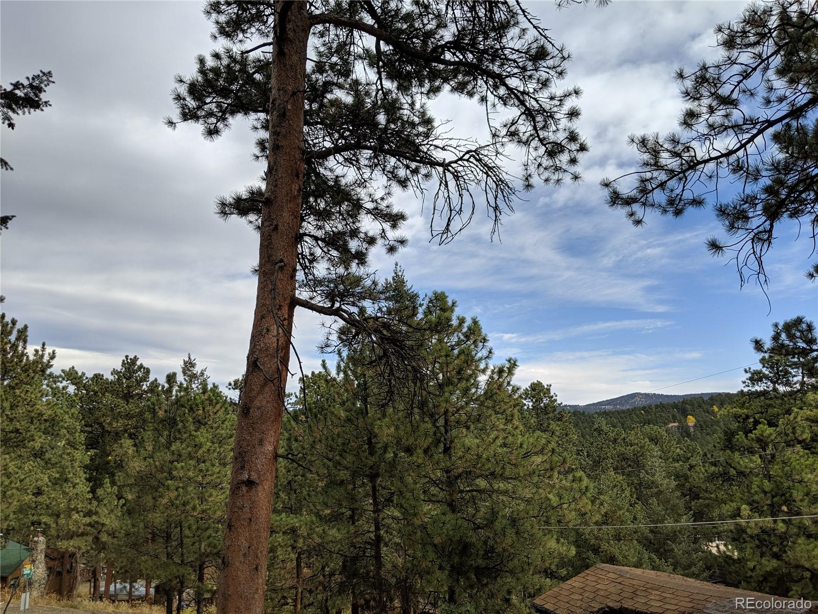 Yucca, Evergreen, CO 80439 - Evergreen, CO real estate listing