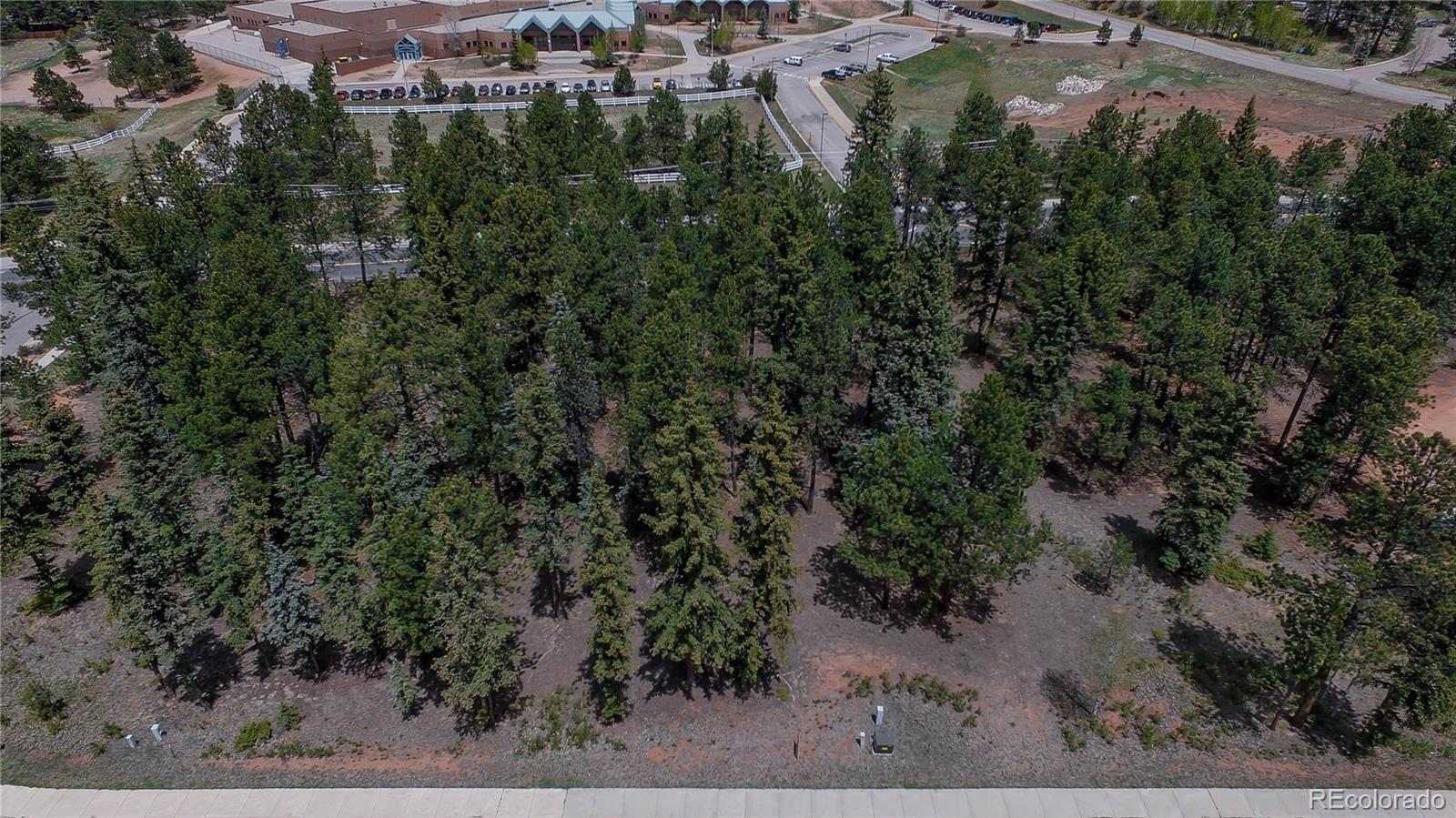 610 Chipmunk Drive Property Photo - Woodland Park, CO real estate listing
