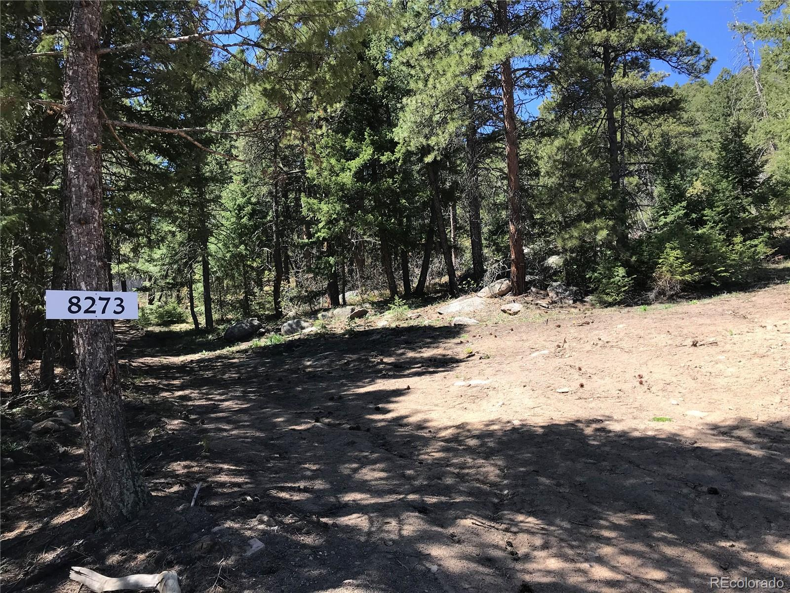8273 Stags Leap Trail Property Photo - Morrison, CO real estate listing