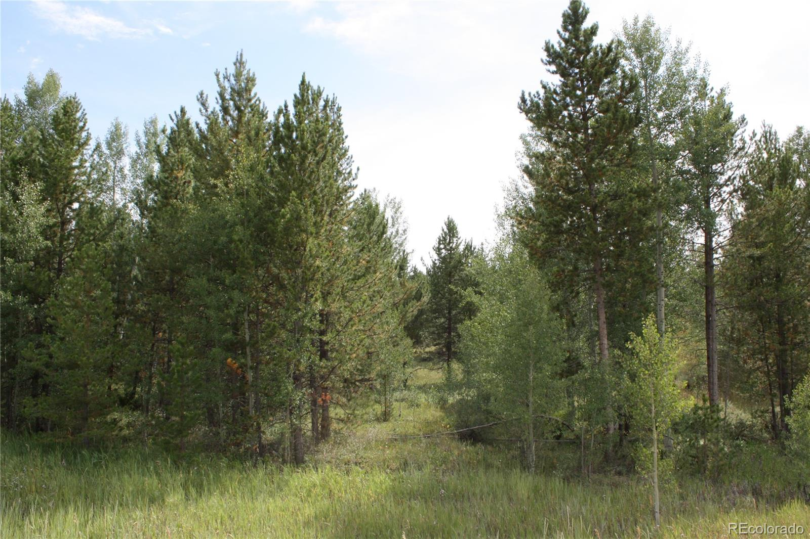 82 County Road 6234b Property Photo - Granby, CO real estate listing