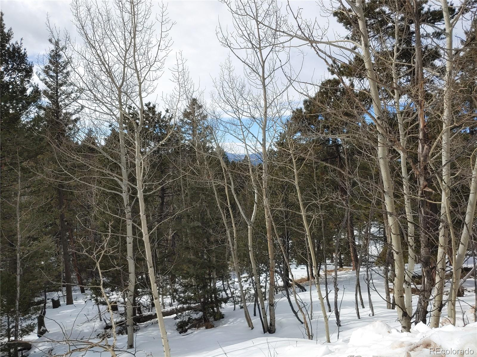 197 Rampart Circle Property Photo - Florissant, CO real estate listing