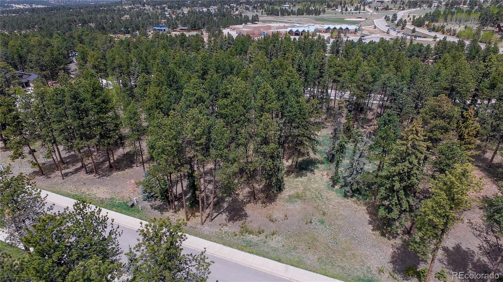 620 Meadowlark Lane Property Photo - Woodland Park, CO real estate listing