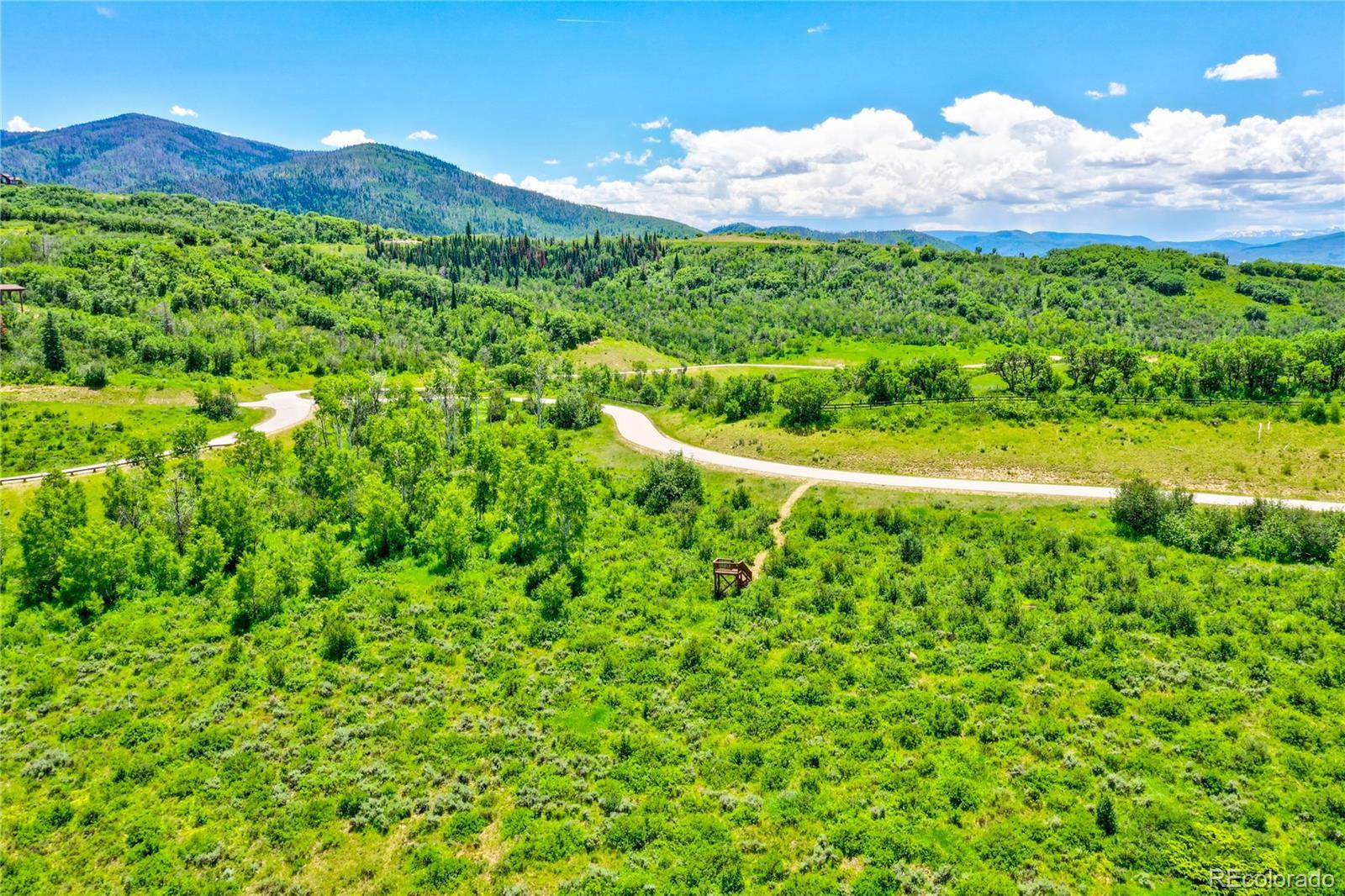 33655 Bald Eagle Drive Property Photo