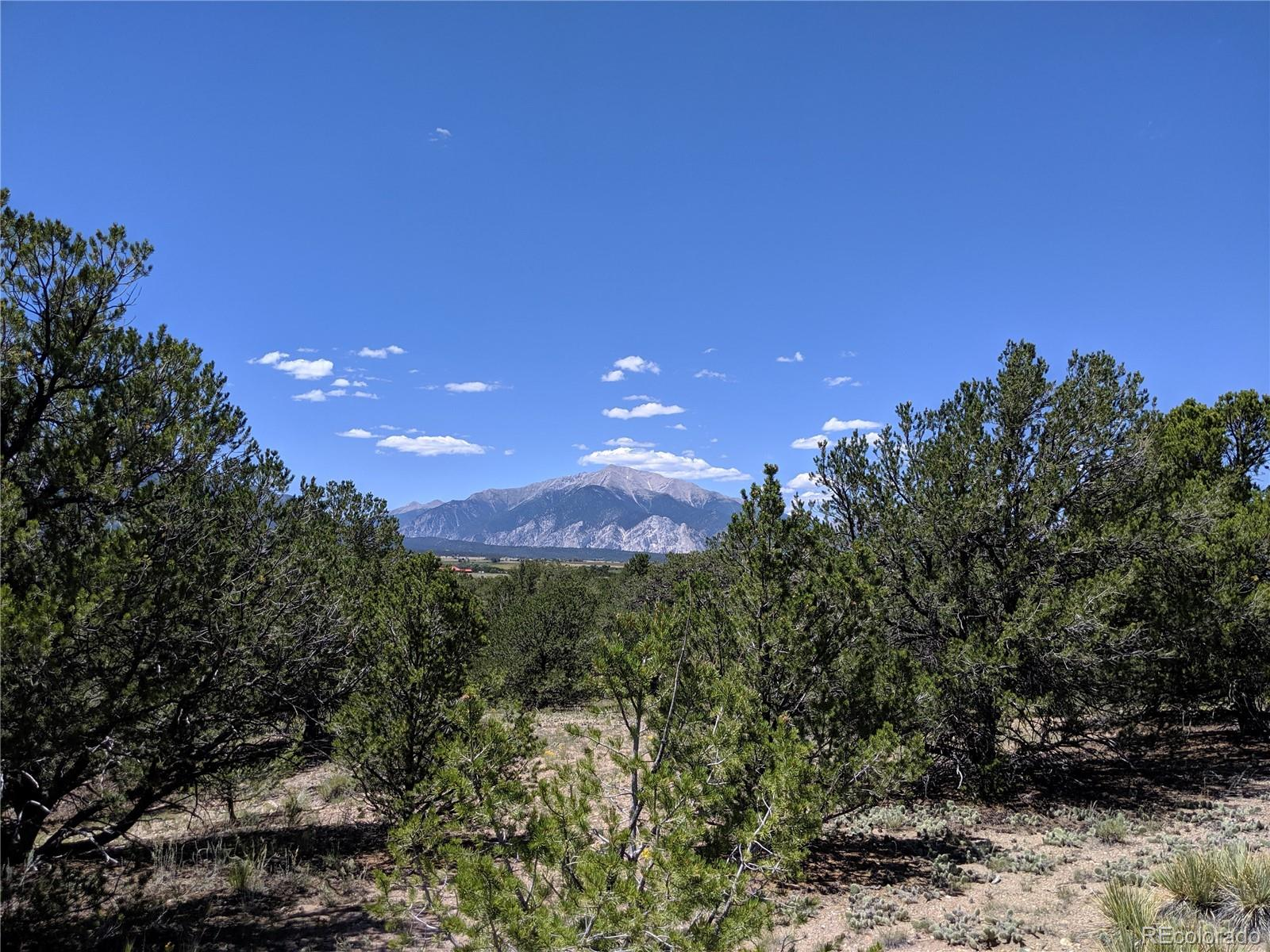 Lot 36 Property Photo - Nathrop, CO real estate listing