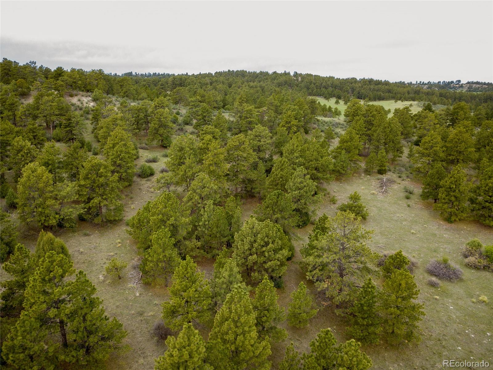 0002 County Road 102 Property Photo - Elbert, CO real estate listing