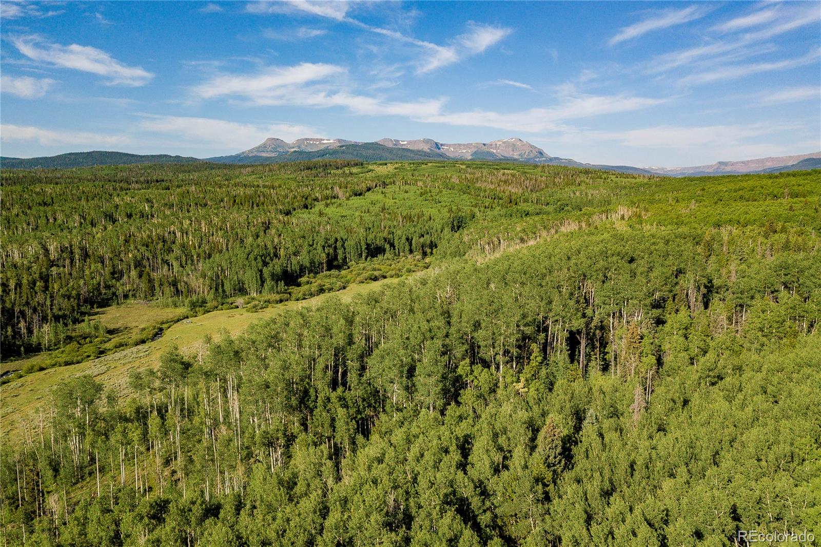 24655 County Road 3B Property Photo - Yampa, CO real estate listing