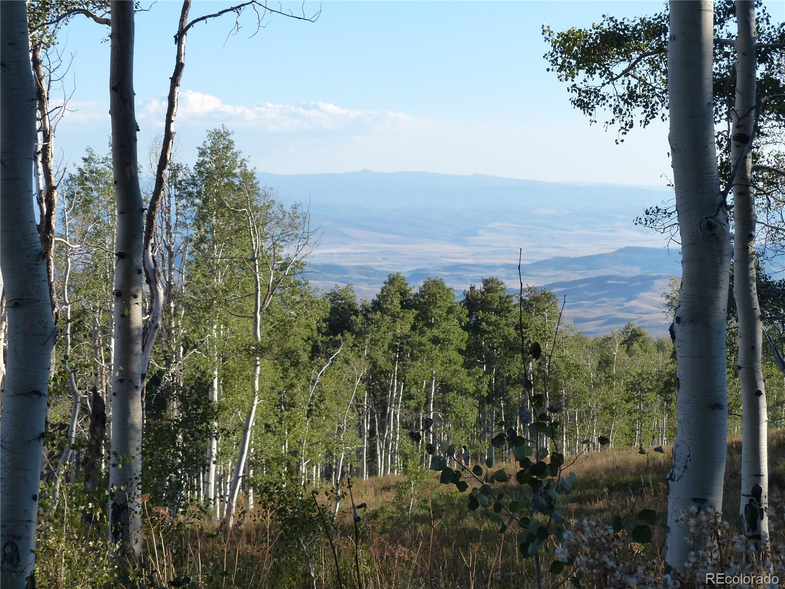 51450 Quaker Mountain Circle Property Photo - Hayden, CO real estate listing