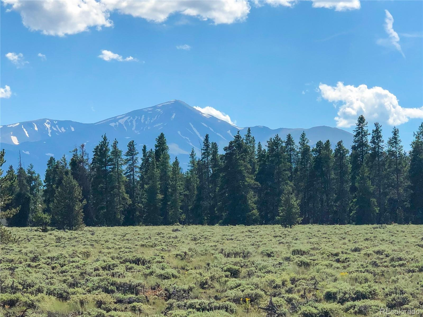 Elk Run Lot 3 Property Photo - Leadville, CO real estate listing