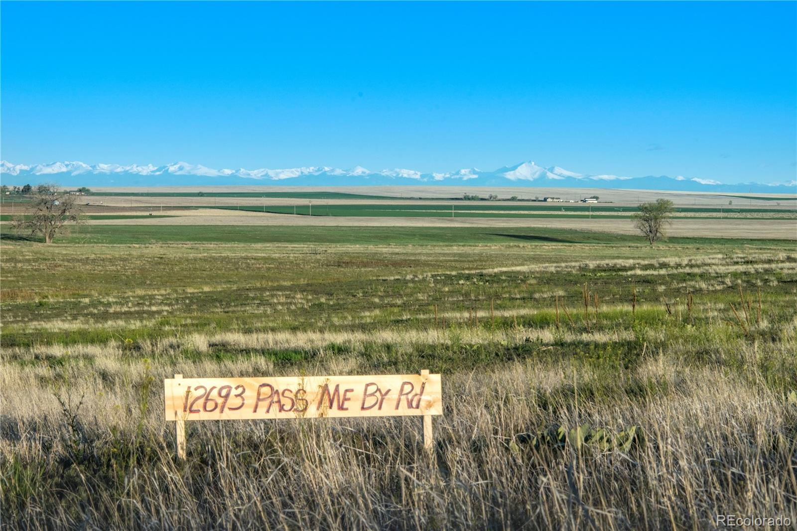 12693 Pass Me By Road Property Photo - Strasburg, CO real estate listing