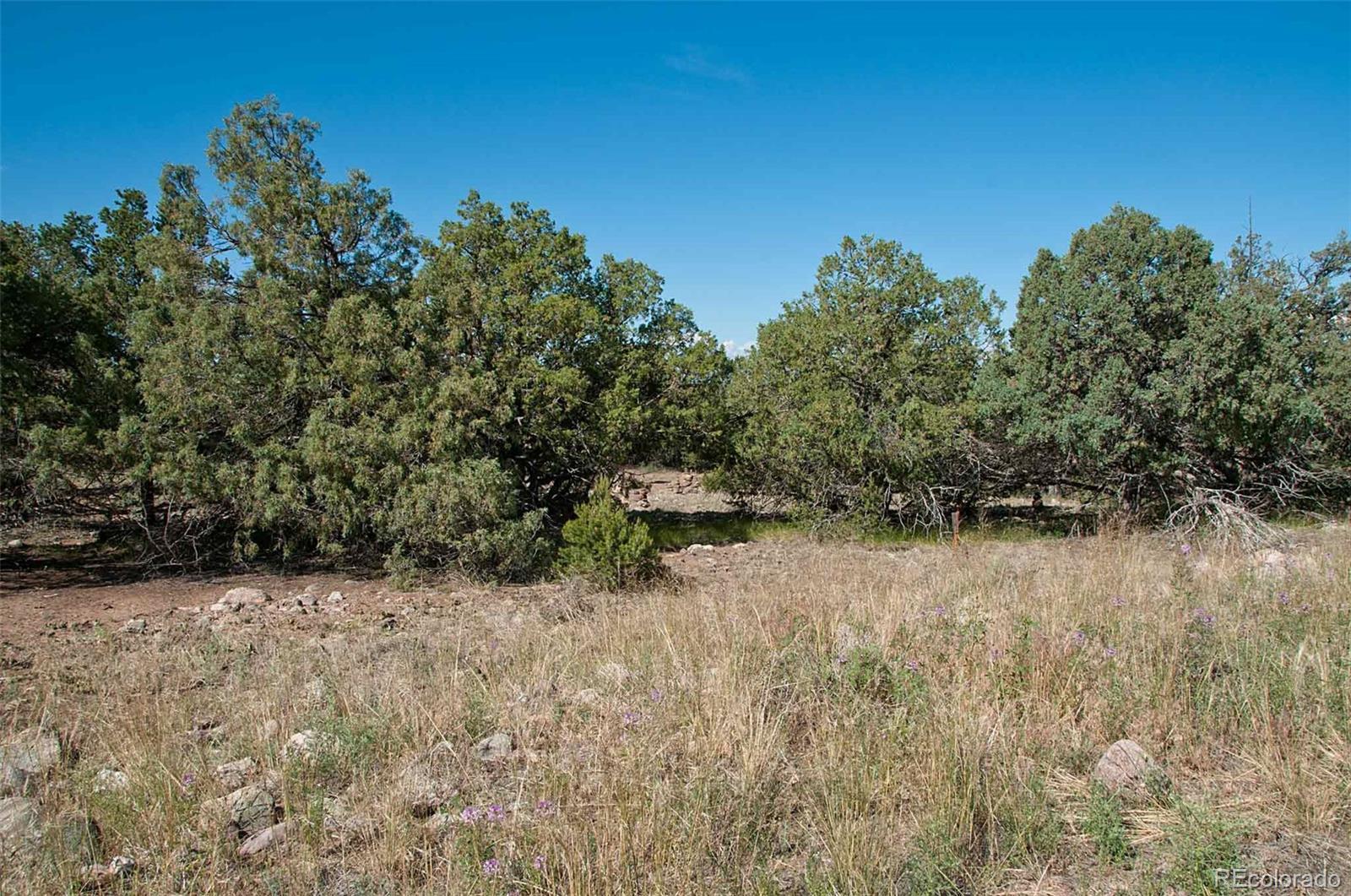 1581 Camino Real, 1589 Crown Pt, 1579 & 1580 Rockaway Property Photo - Crestone, CO real estate listing