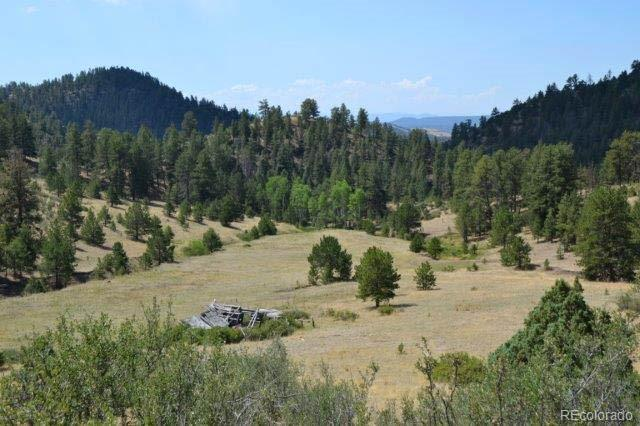 TBD Secluded Canyon Heights Property Photo - Florissant, CO real estate listing