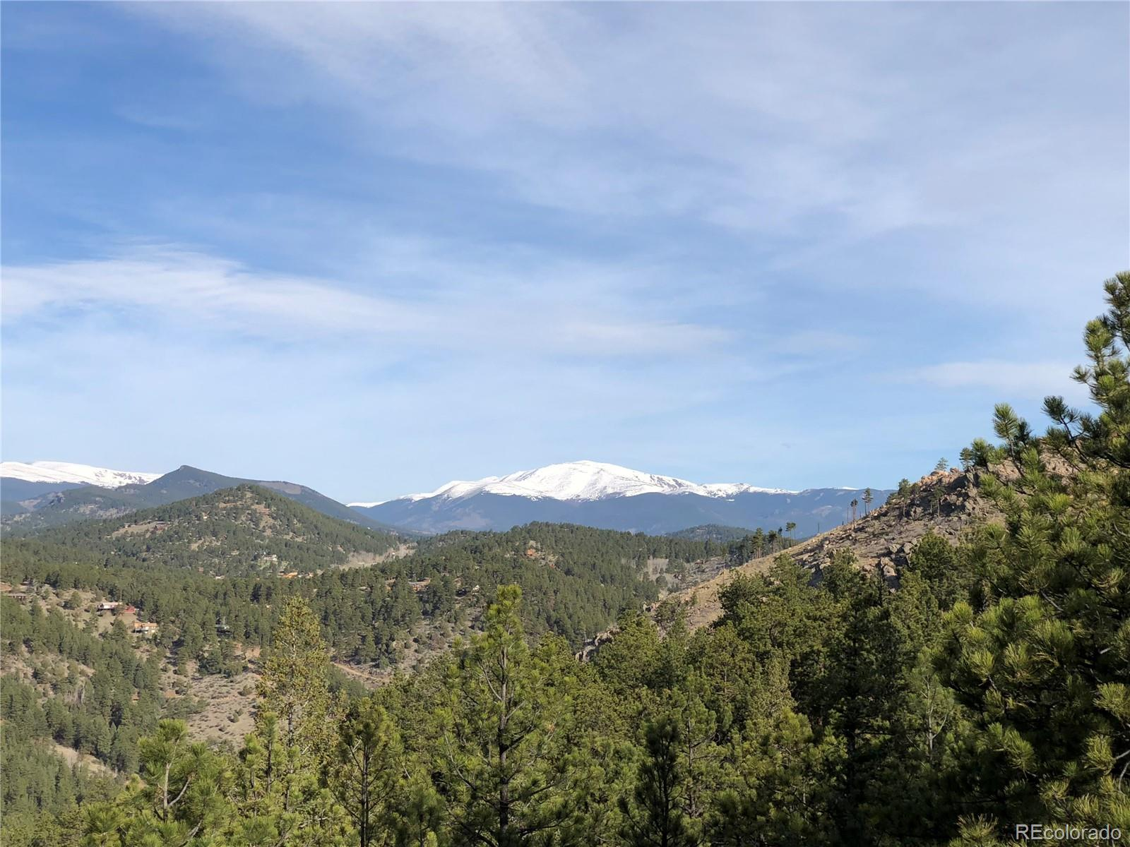 1379 Hi Meadow Drive Property Photo - Bailey, CO real estate listing