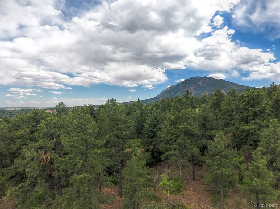2054 Stratton Forest Heights Property Photo - Colorado Springs, CO real estate listing