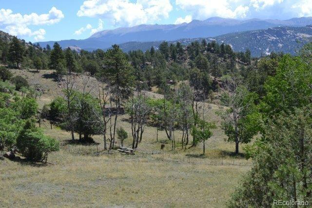 696 Wavelyn Ann Drive Property Photo - Florissant, CO real estate listing
