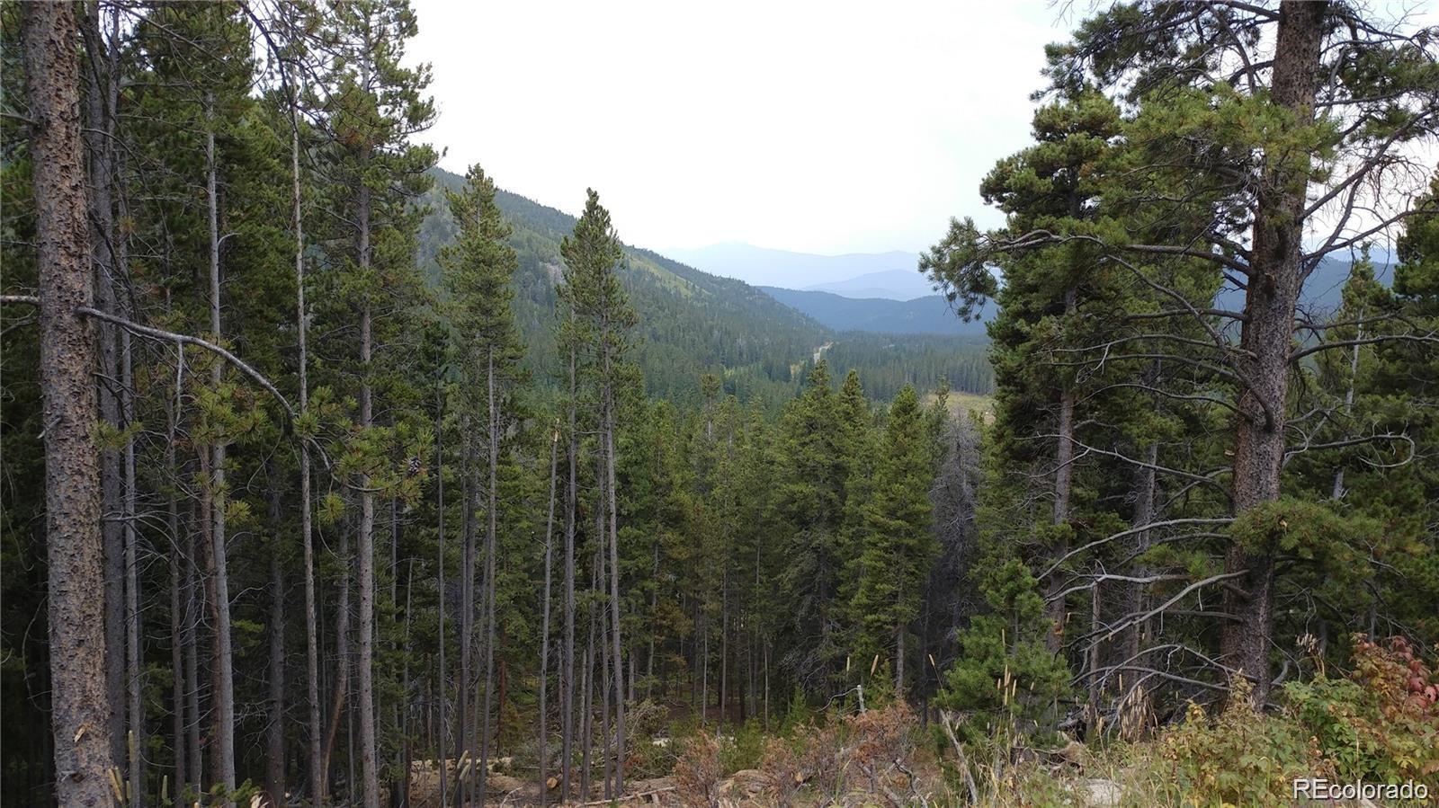 Lot 716/717 Texas Drive Property Photo - Idaho Springs, CO real estate listing