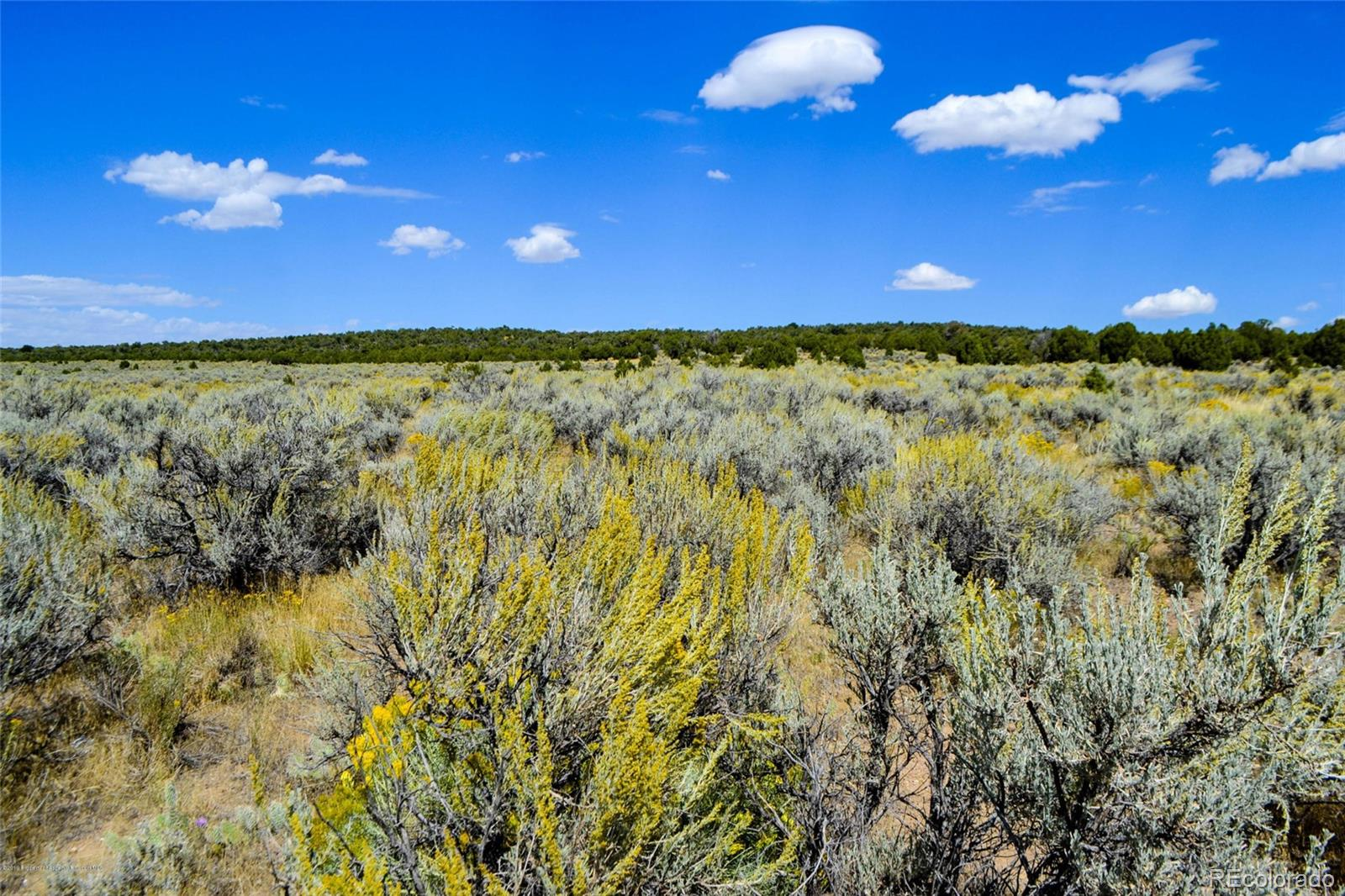 Parcel E State Hwy 318 Property Photo - Maybell, CO real estate listing