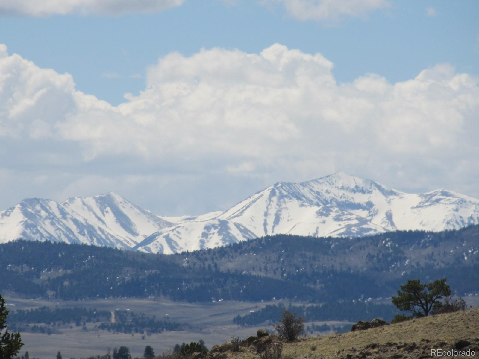 Chickasaw Road Property Photo - Hartsel, CO real estate listing