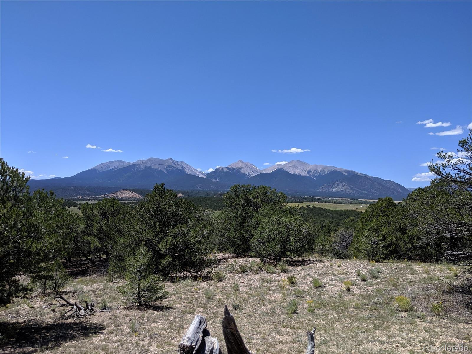 Lot 46 Property Photo - Nathrop, CO real estate listing