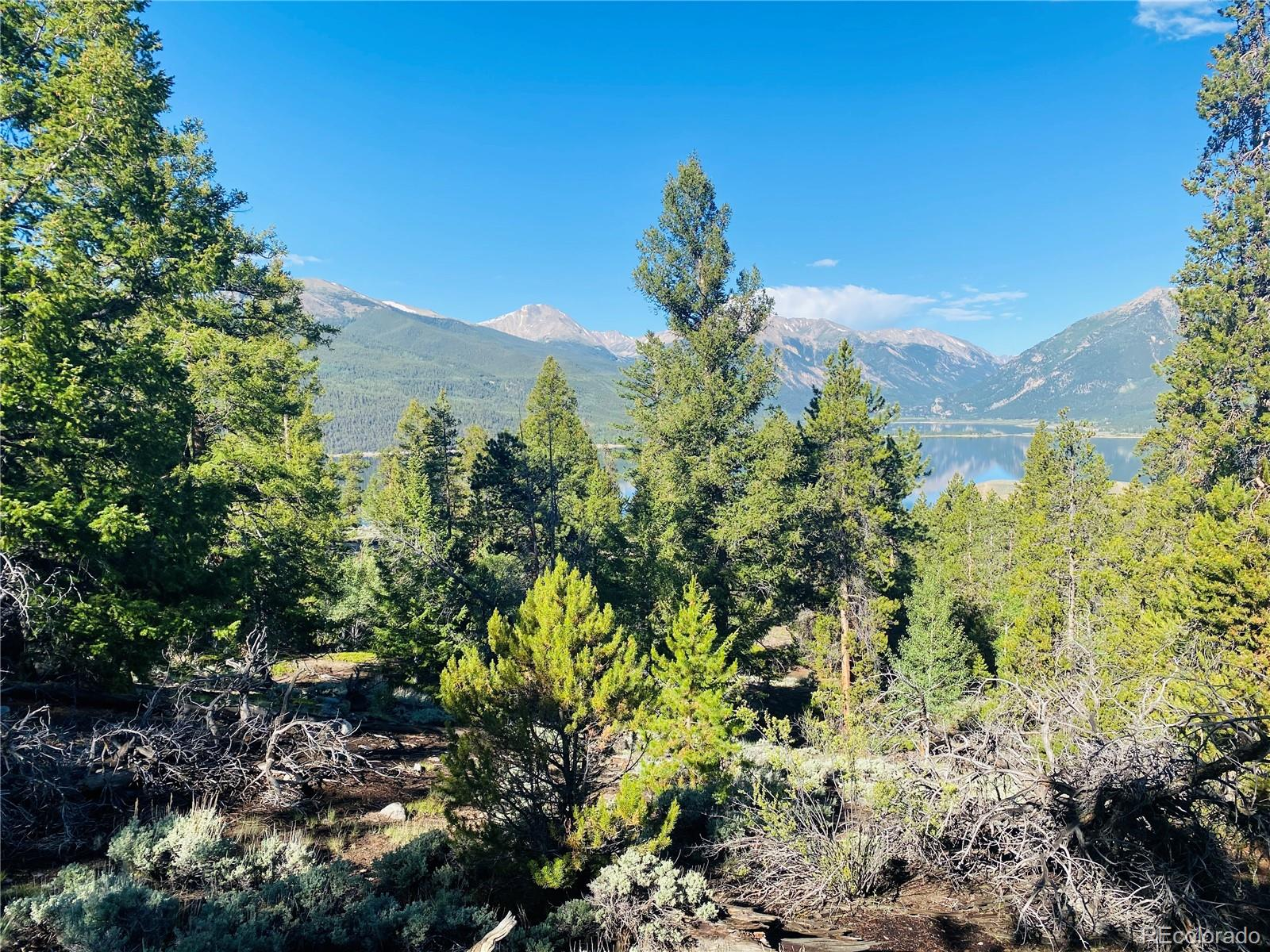 Reva Ridge Road Property Photo - Twin Lakes, CO real estate listing