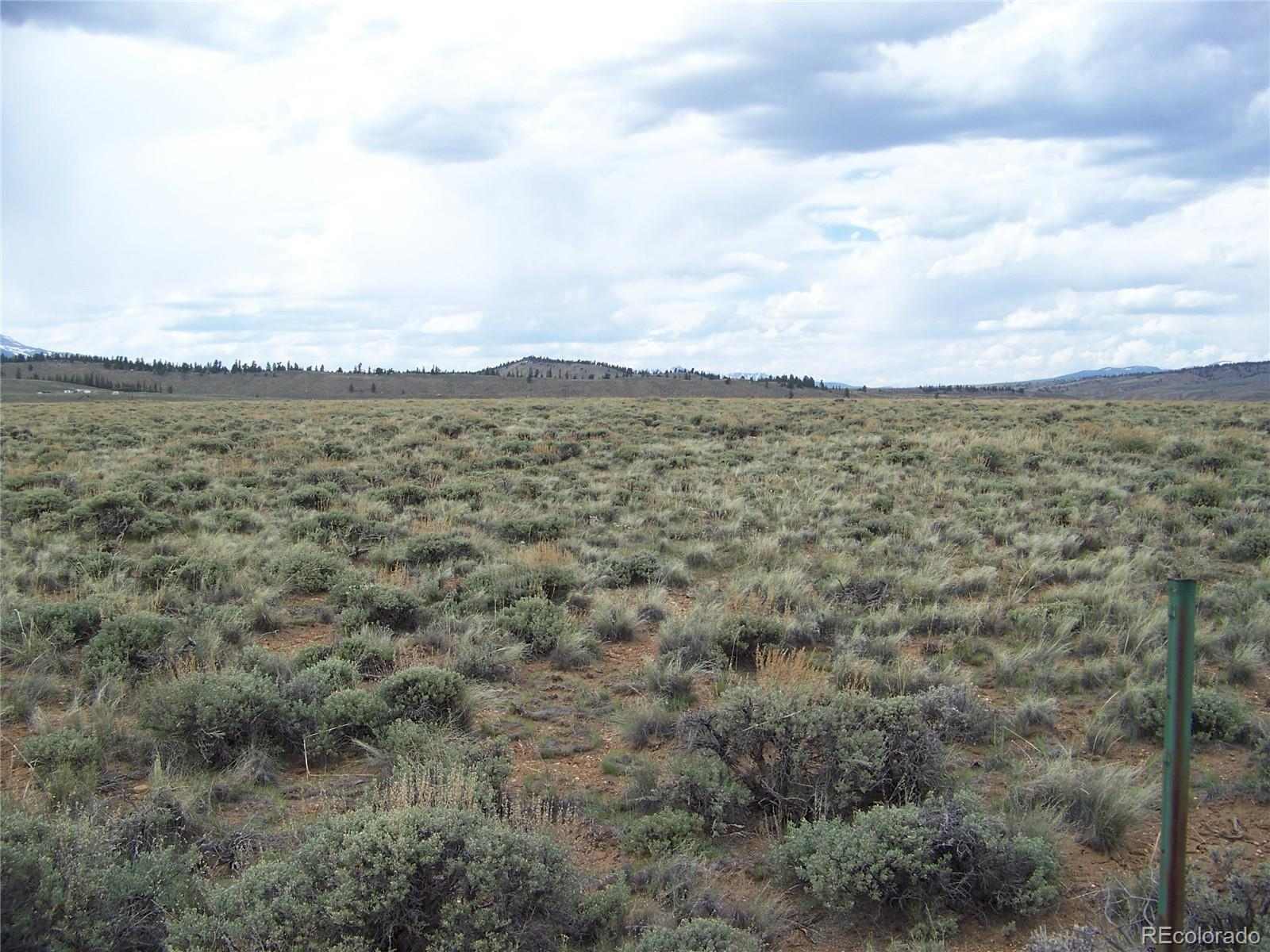 County Road 298 Property Photo - Twin Lakes, CO real estate listing
