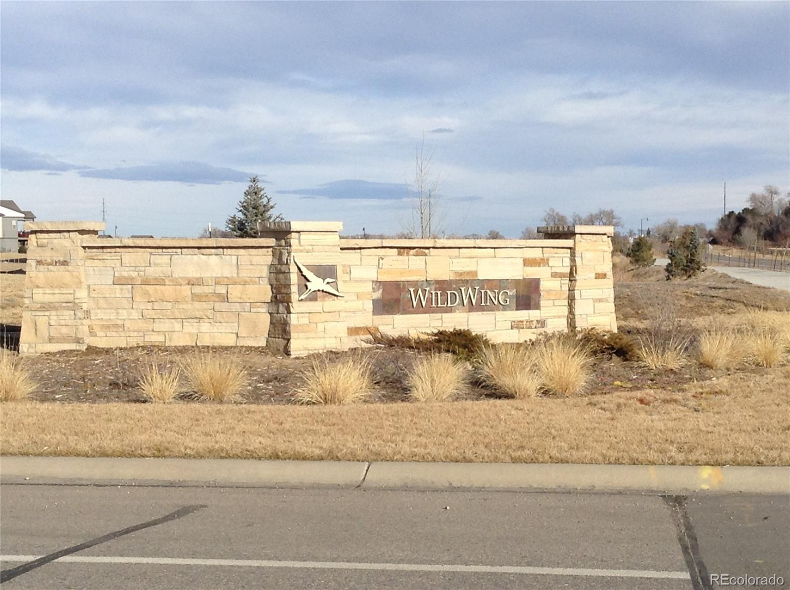 Lot 12, Block 1 Wildview Drive Property Photo - Timnath, CO real estate listing