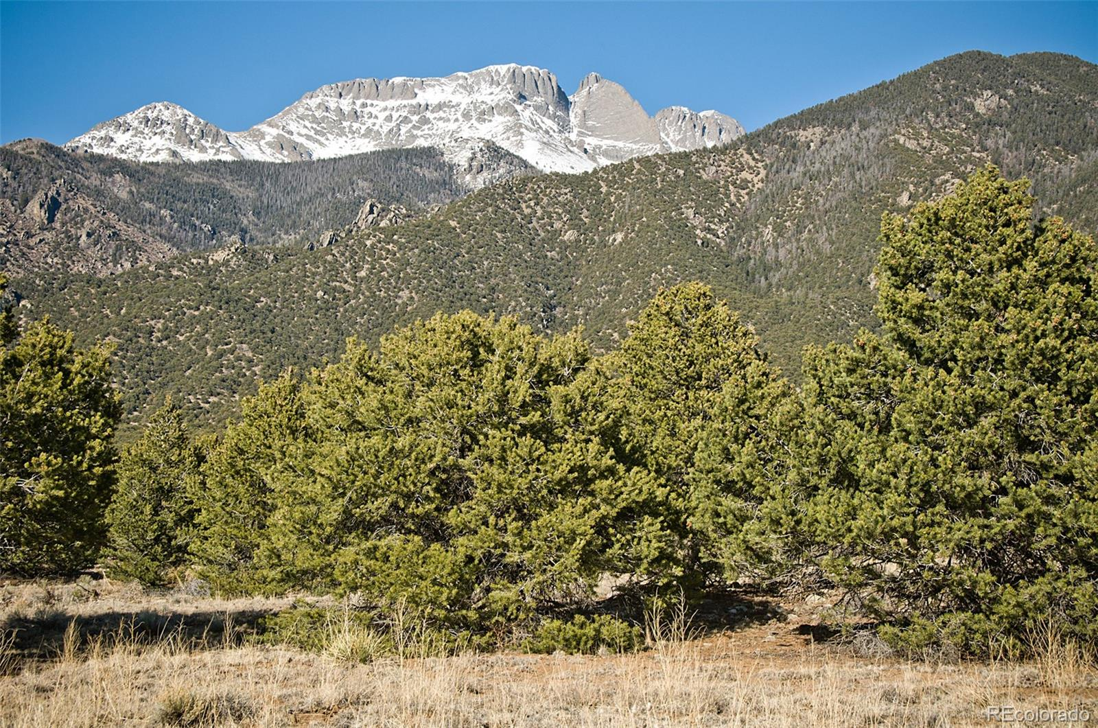 3431 W Graceful Court Property Photo - Crestone, CO real estate listing