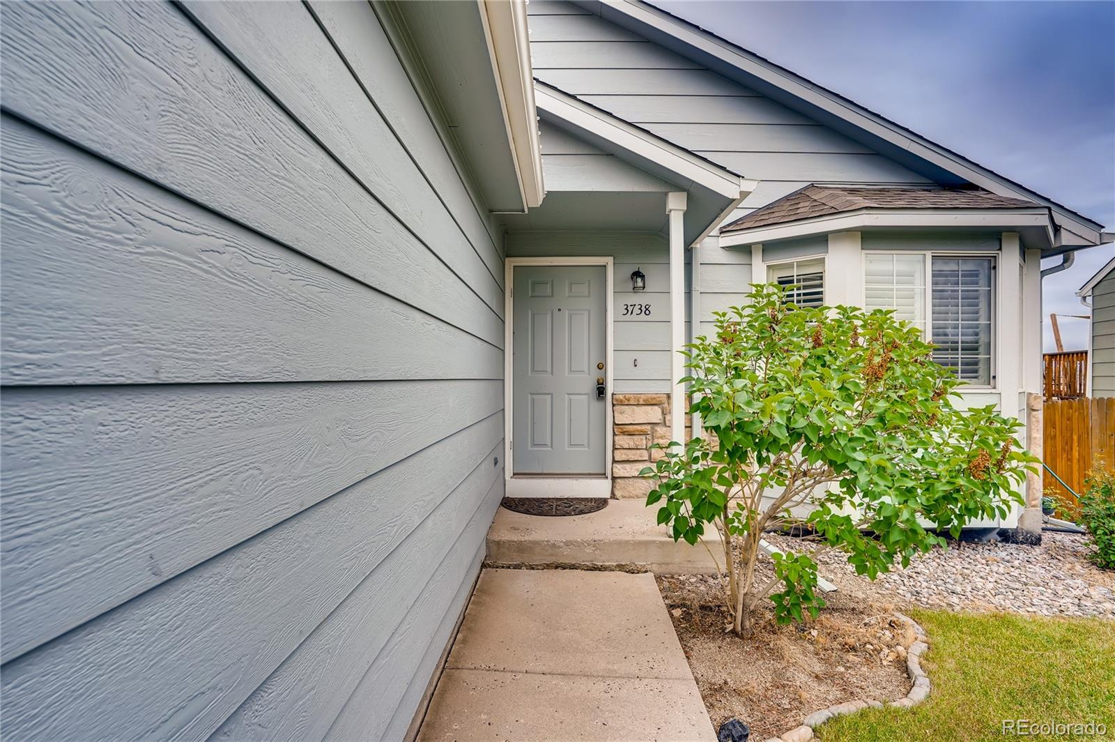3738 Black Feather Trail Property Photo - Castle Rock, CO real estate listing