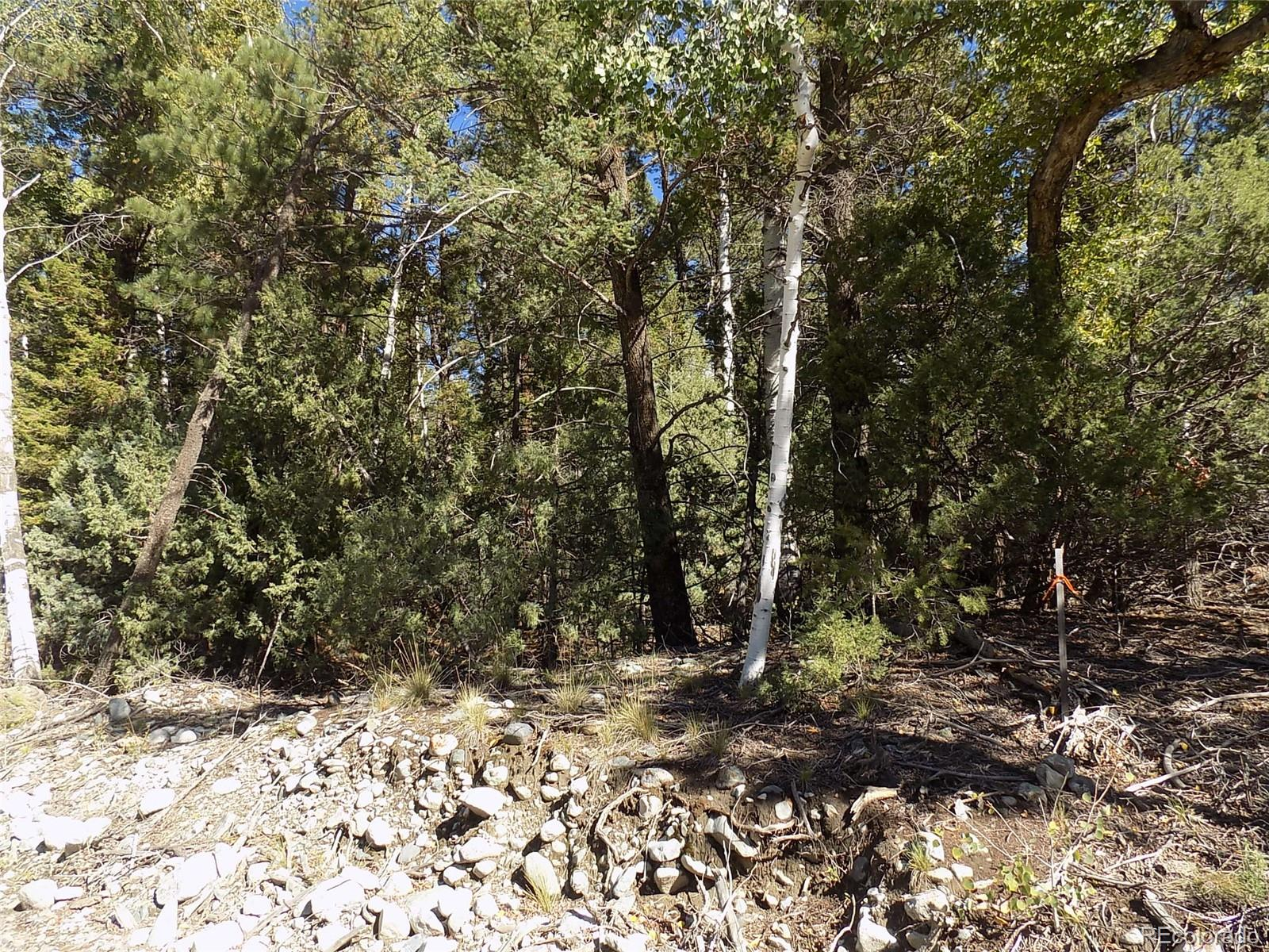 Zapata Court Property Photo - Mosca, CO real estate listing