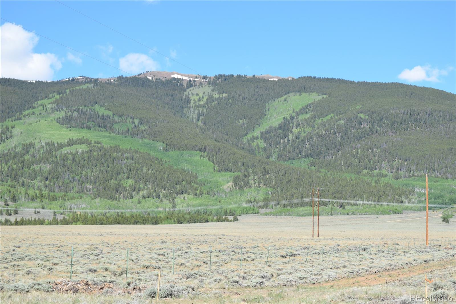 County Road 298 Track 3-A Property Photo - Twin Lakes, CO real estate listing