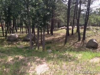667 Silver Oak Grove Property Photo - Colorado Springs, CO real estate listing