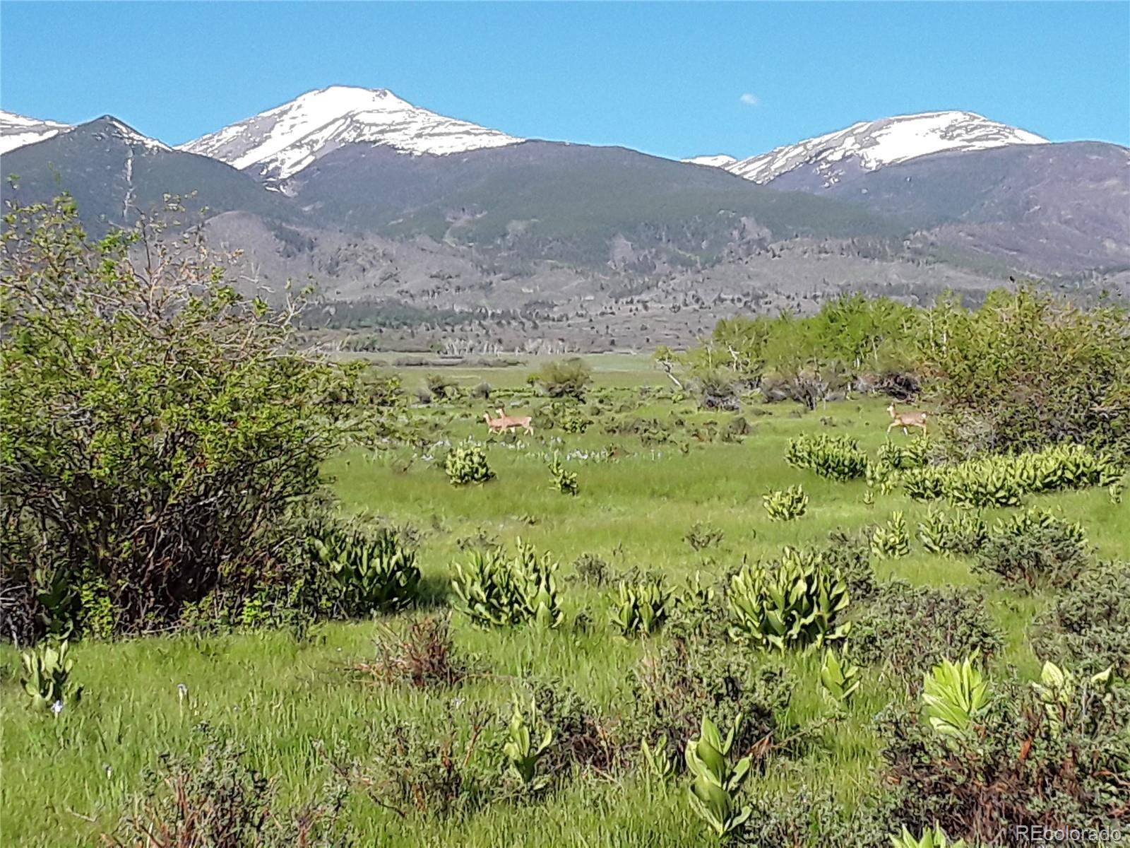 480 Lake Creek Lane Property Photo - Cotopaxi, CO real estate listing