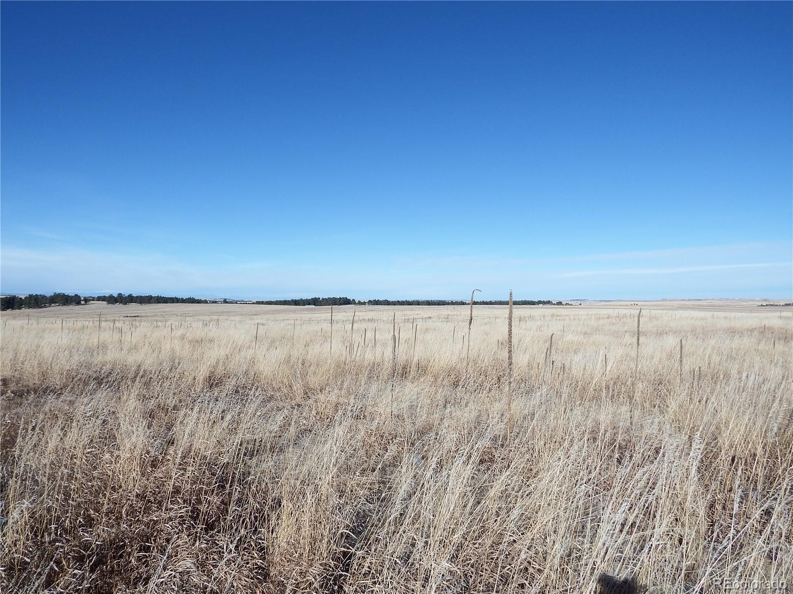 21193 Red Cloud Ridge Property Photo - Elbert, CO real estate listing