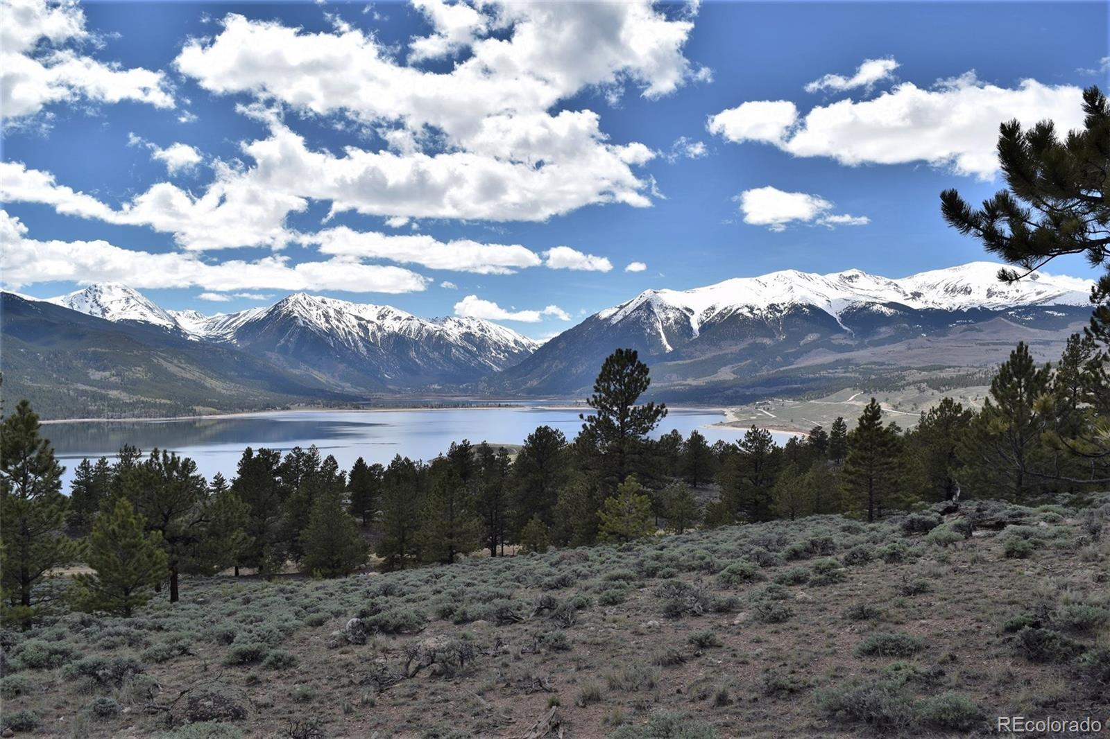 Reva Ridge Property Photo - Twin Lakes, CO real estate listing