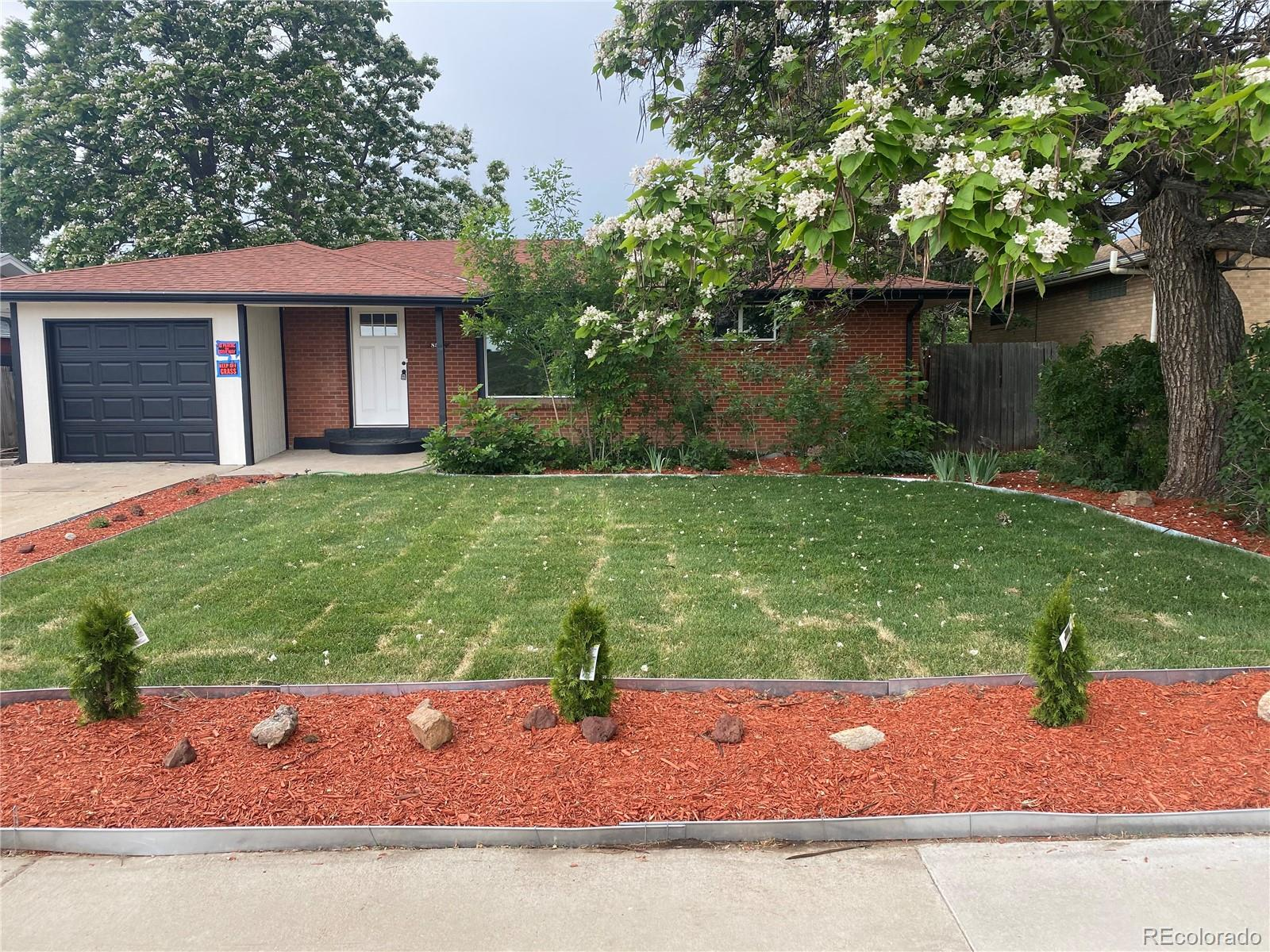8531 Lowell Boulevard Property Photo - Westminster, CO real estate listing