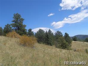 Elizbone Property Photo - Central City, CO real estate listing